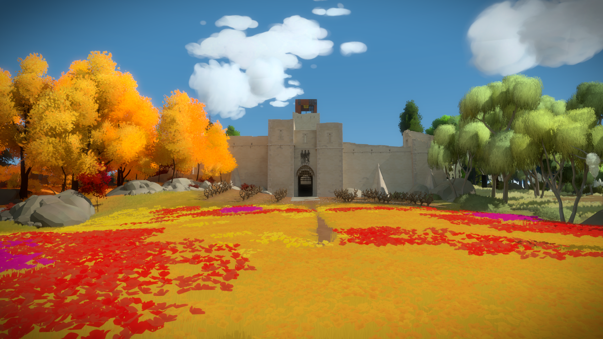the witness world